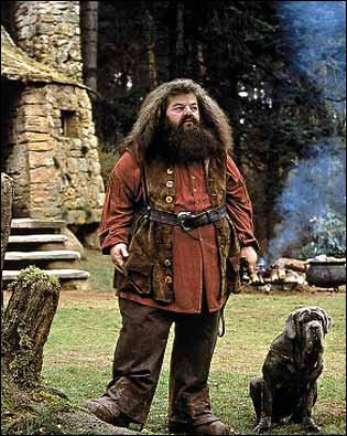 Rubeus Hagrid est dans la saga...