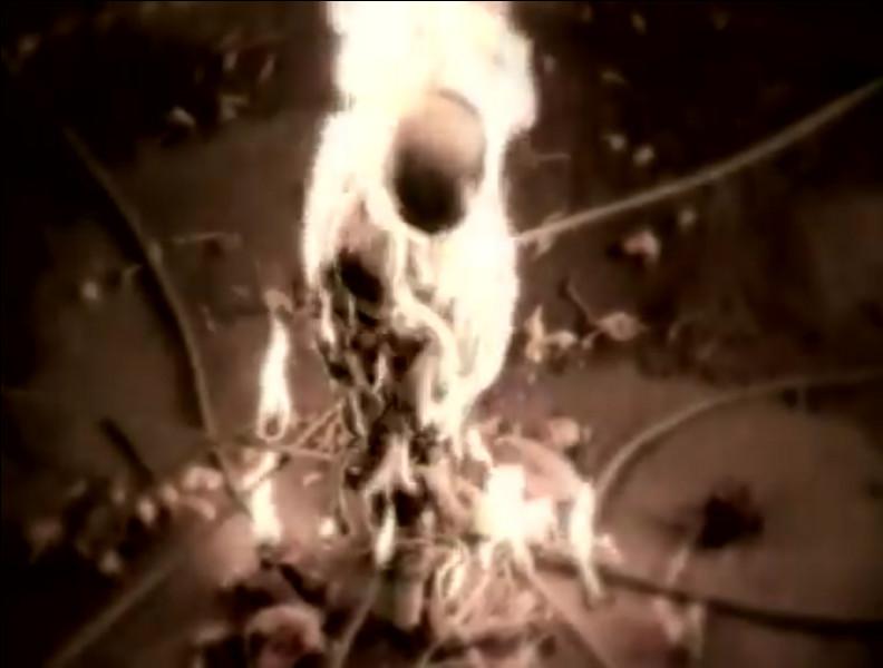 """Complétez les paroles de ce vers du troisième couplet : """"Je me ferai ... Pour que le feu ..."""""""