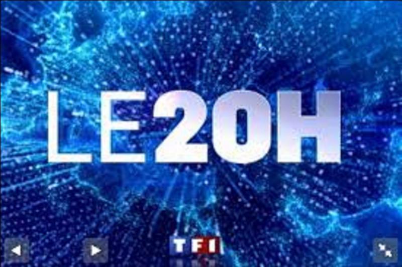 Qui a présenté le journal de 20 heures de TF1 de 1987 à 2008 ?