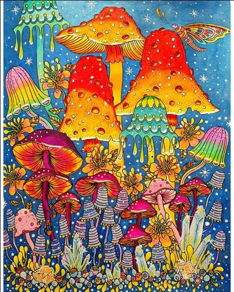 Quel champignon est appelé amanite des Césars ?
