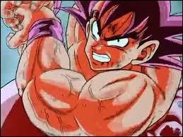Quelle technique de Vegeta n'a pas résisté au Kamehameha Kaioken x 4 de Goku ?