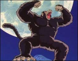 Pourquoi Gohan se transforme en Oozaru pendant son entraînement ?