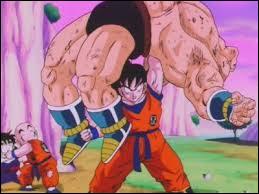 Quelle technique Goku a-t-il apprise sur la planète Kaïo ?