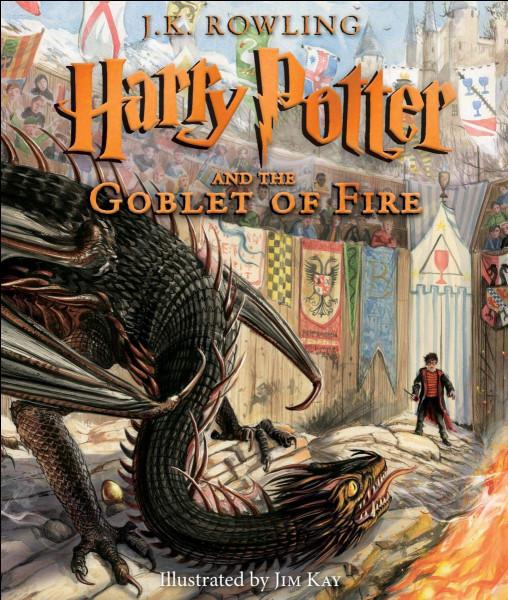Où se trouve le troll de Harry Potter 1 ?