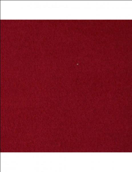 Comment appelle-t-on la surface de couleur brique sur laquelle on joue au tennis, notamment au tournoi de Roland-Garros ?