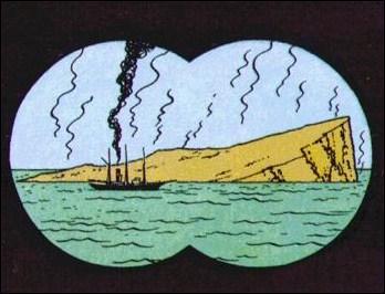 Qu'est-ce qui pousse sur l'île mystérieuse de Tintin ?