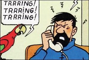 Quel numéro de téléphone est souvent confondu avec celui du château de Moulinsart ?