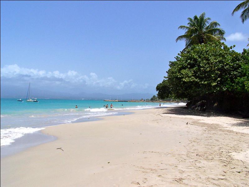 Quelle île de la Guadeloupe est chantée par Laurent Voulzy ?