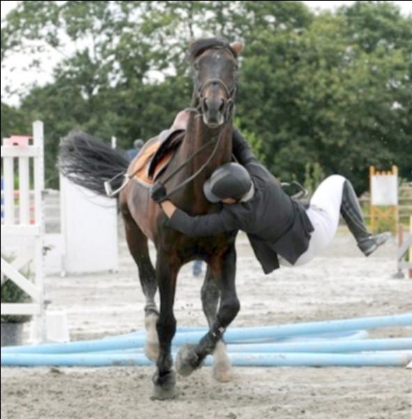 Tu es au galop, ta monture est relaxée et soudainement, elle part au vrai galop. Elle a eu peur parce qu'un autre cheval a eu peur... Bref, ce mouvement soudain te déséquilibre et tu te retrouves accroché à l'encolure de ton cheval. Que faire dans un tel cas ?