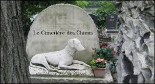Où se situe le cimetière des Chiens considéré comme le premier cimetière pour animaux de l'ère moderne ?
