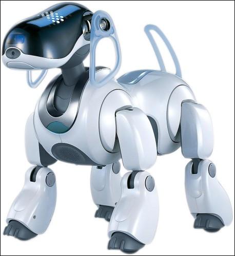 Quel est le nom de la compagnie qui a développé et commercialisé le robot IBO ?