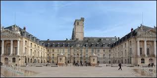 François Rebsamen, maire (PS) depuis 2001, se représente; il sera notamment face à Stéphanie Modde (EELV) et Emmanuel Bichot (LR) :