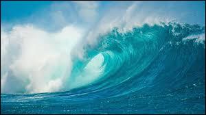 Dans quel océan se situe le royaume des Tonga ?