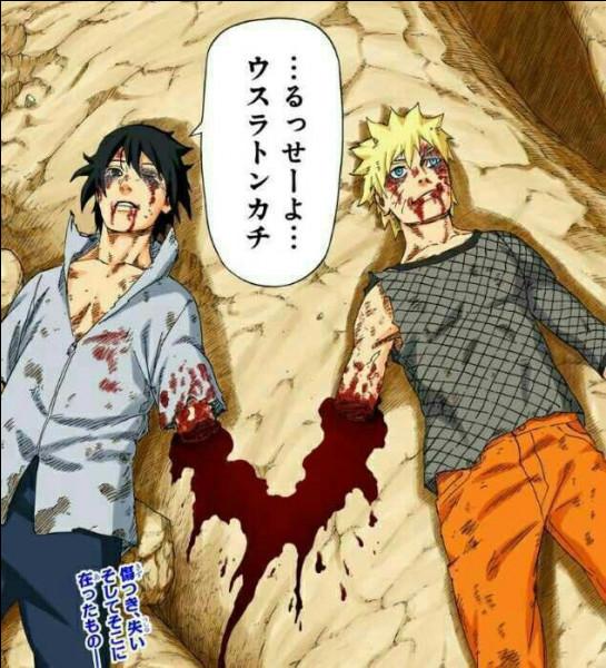 Le plan de Naruto et Sasuke représente ?