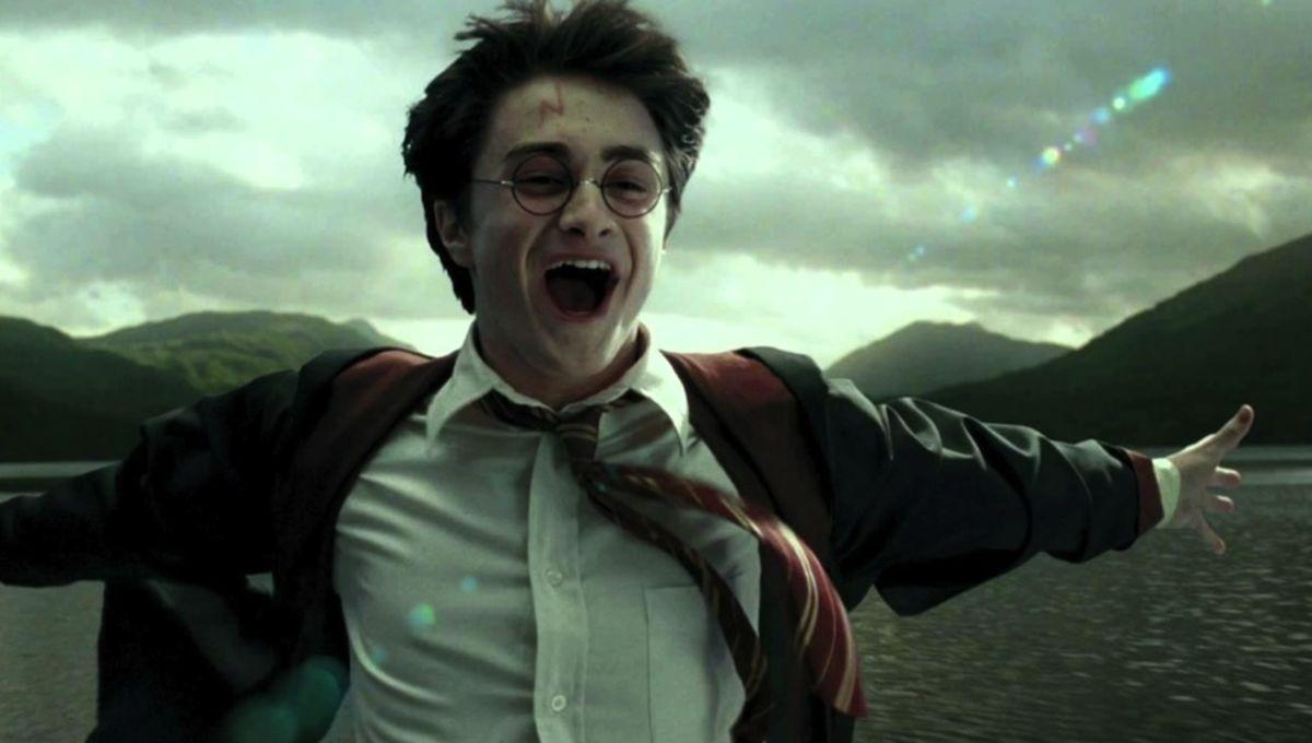 Connais-tu vraiment la famille Potter ?