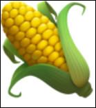 C'est un(e) ... de maïs.