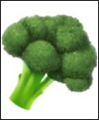 Ce brocoli est de couleur...