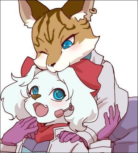 Selon Dylan Cuthbert, développeur de Star Fox, Star Fox 2 et Star Fox Command, quels sont les noms officiels de Miyu Lynx & Fay Spaniel ?