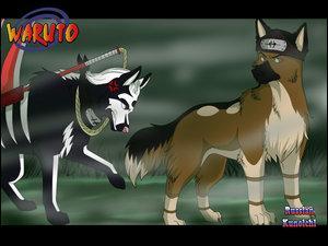 Qui sont ces deux chiens qui se promènent dans la brume ?