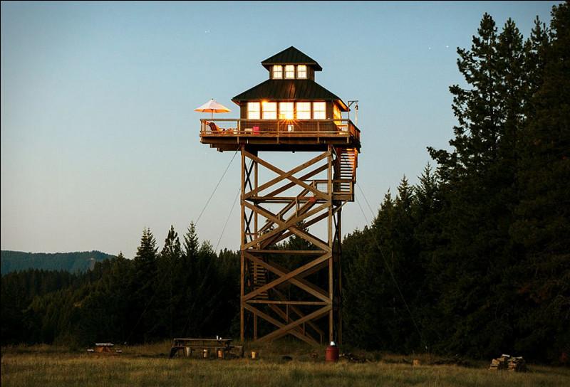 Dans les hauteurs, cette tour a une vue imprenable sur tout le massif montagneux ! Deux gardes-forestiers sont présents en permanence et donnent l'alerte à la moindre petite fumerolle. De quel type de tour s'agit-il ?