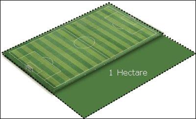 Combien de mètres carrés fait un hectare ?