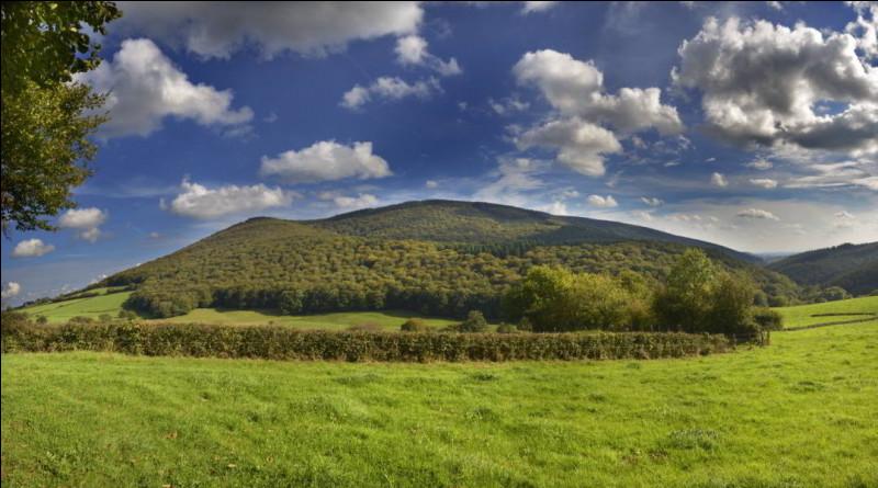 Dans quel département se situe le mont Beuvray, site de l'ancienne capitale gauloise Bibracte ?