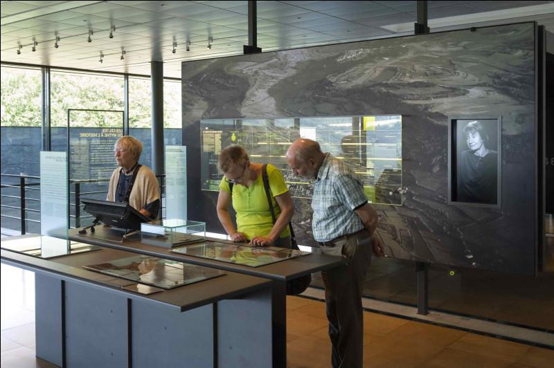 Combien de personnes le musée a-t-il accueillies en 2019 ?