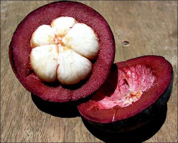 Quel est ce fruit tropical à la peau amère qui entoure une chair blanche parfumée et juteuse disposée en plusieurs quartiers ?