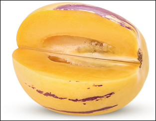 Quel est ce fruit à la peau jaune striée de rayures pourpres dont la chair très juteuse a un goût de concombre ?