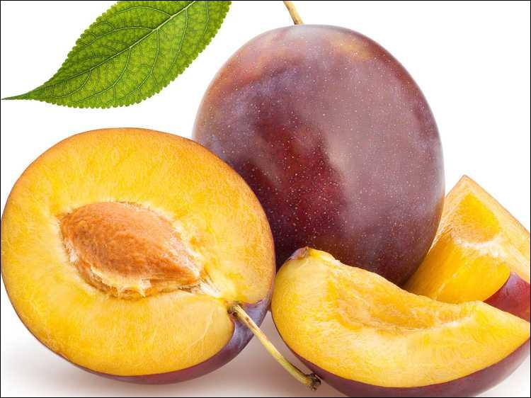Quel est cette prune violette à la chair jaune d'or et acidulée ?