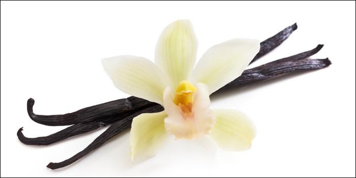 Quel est ce fruit provenant de la fleur de certaines orchidées qui a la forme d'une gousse remplie de milliers de graines parfumées ?