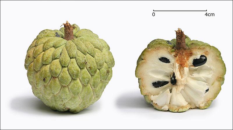 Quel est ce fruit tropical avec une peau écailleuse épaisse et molle qui couvre une chair blanche, tendre, parfumée et criblée de pépins ?