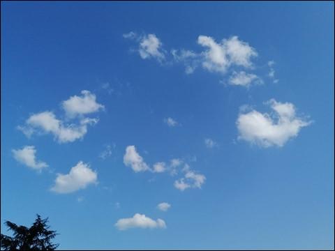 Quel est ce genre de nuage ?