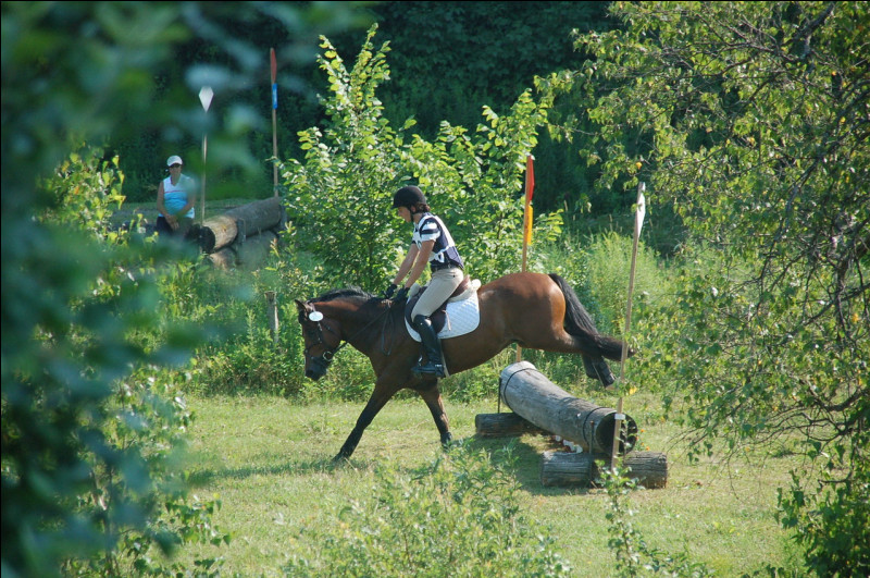 Le cavalier doit montrer preuve de bonne direction, de respect et de confiance envers sa monture.