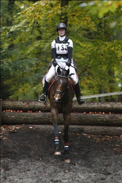 Cette compétition a pour principe de tester les capacités d'endurance, de rapidité et la capacité de saut pour le cheval.
