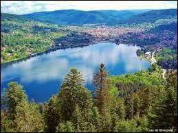 Où est situé le lac de Gérardmer, dont la ville du même nom est la capitale de la jonquille, la patrie du géromé, un haut lieu du textile et une station de ski ?