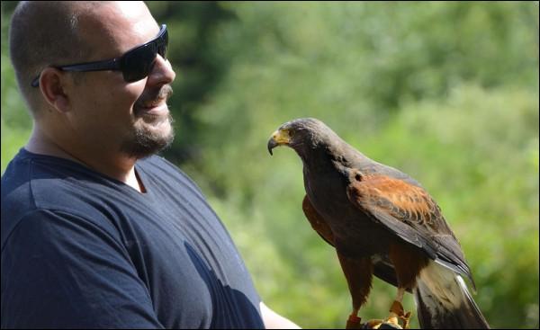 Parmi tous ces oiseaux, lesquels sont présentés chaque été sur le mont Beuvray par les fauconniers Maud et Julien ?