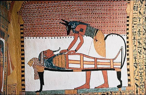 Dans l'Égypte antique, la technique de l'embaumement exige une certaine connaissance de l'anatomie et une extrême minutie, afin que le corps défunt conserve son intégrité : le cerveau est retiré par les narines, puis les viscères sont extraits de l'abdomen et déposés dans 4 …, disposés près du sarcophage.