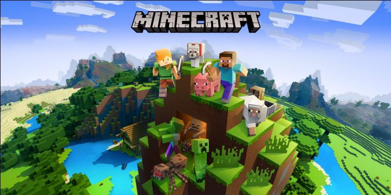 """""""Minecraft"""" est un jeu de..."""