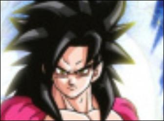 En plus de Goku et Broly, qui apparaît sur la jaquette du jeu ?