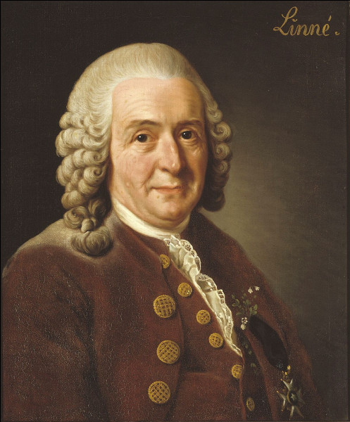 Le scientifique suédois Carl Linnaeus est surtout connu pour son travail dans le domaine de ...