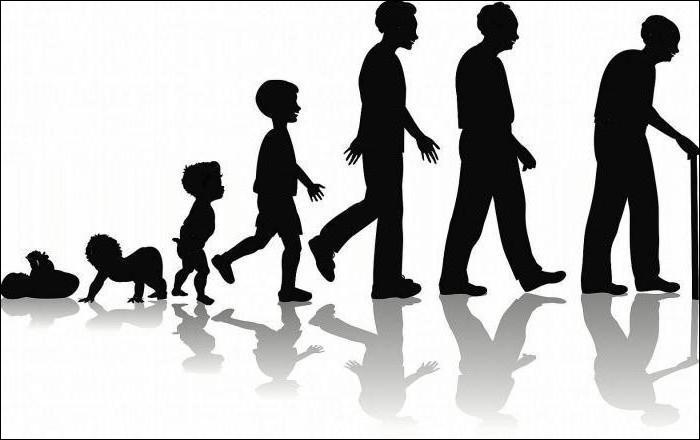 L'évolution individuelle est appelée :