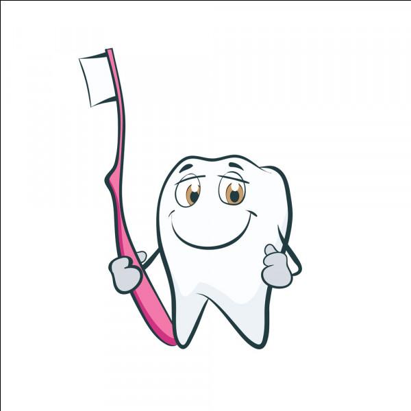Comment bien se laver les dents ?