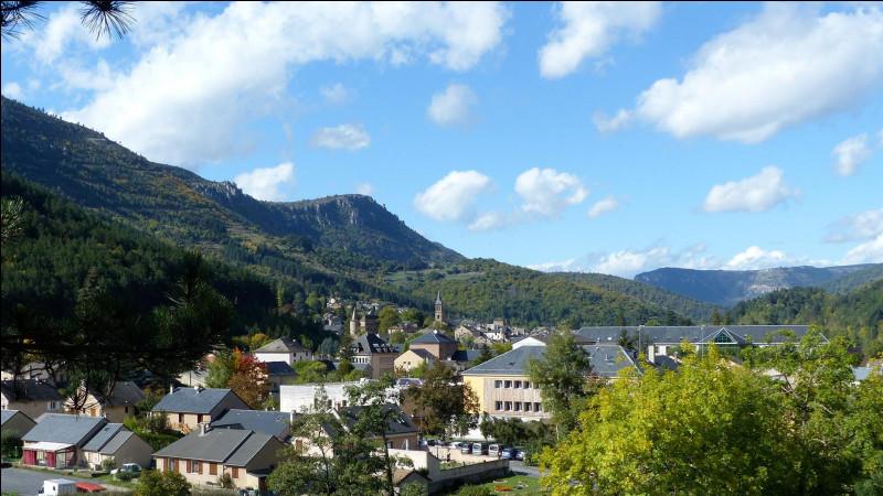Petite ville des Cévennes, sous-préfecture du département de la Lozère :