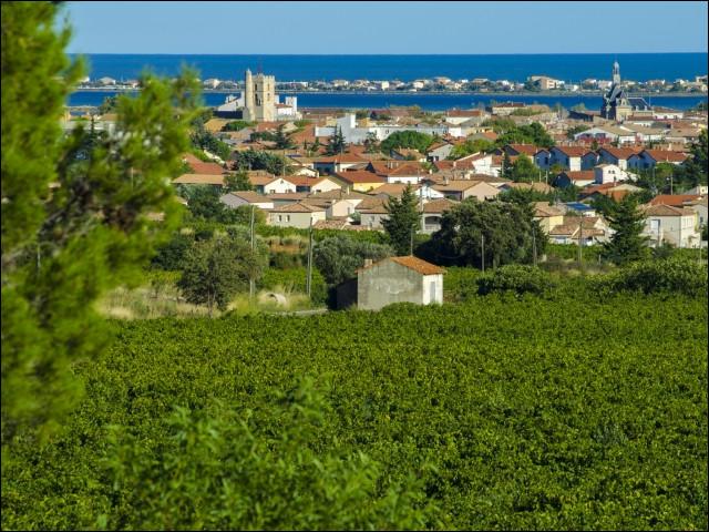 Ville de 20 000 habitants du département de l'Hérault, située sur la côte languedocienne en bordure de l'étang d'Ingril :