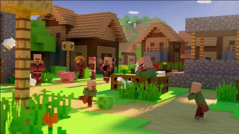 C'est un village.