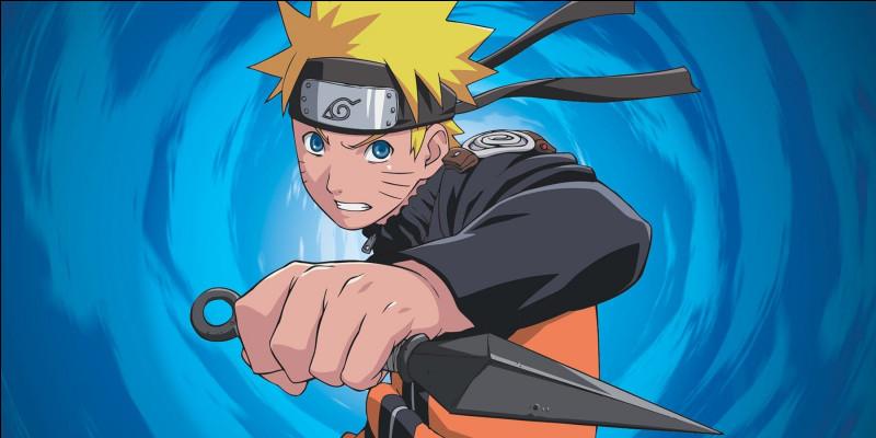 Quel est le style de combat de Naruto ?