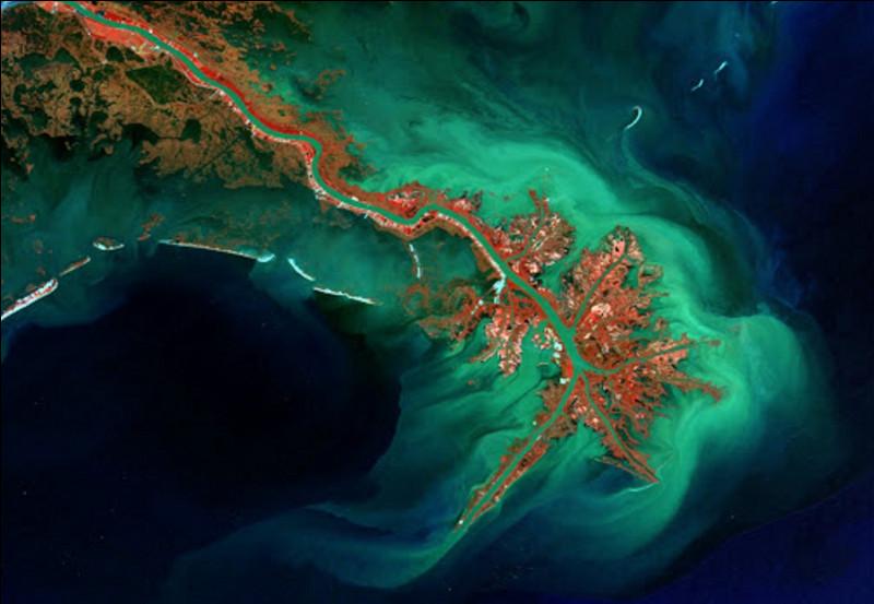 Quel fleuve forme son delta en Louisiane ?