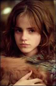 Durant ses années scolaires, à un certain moment, Hermione était amoureuse de Harry.