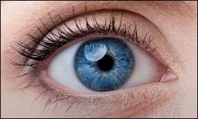 De quelle couleur tes yeux sont-ils ?